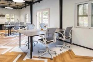 办公室放置绿植有哪些好处?